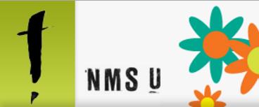 NMSU stavanger
